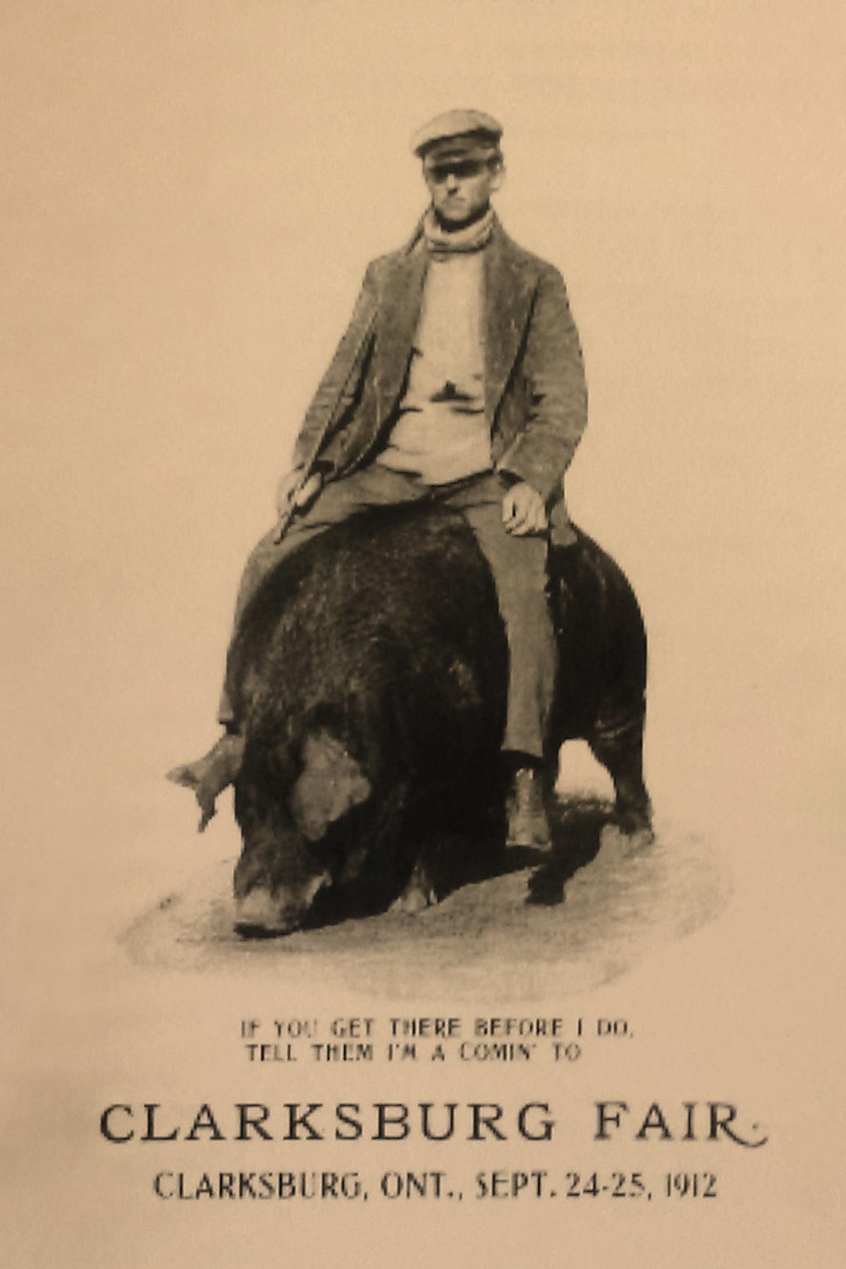 Clark the Pig
